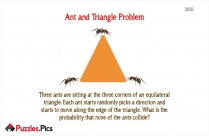 Ant And Triangle Problem