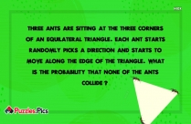 Ant And Triangle Problem Interview Puzzle