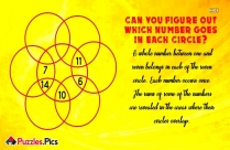 Can You Figure Out Which Number Goes In Each Circle?