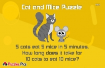 Cat And Mice Puzzle