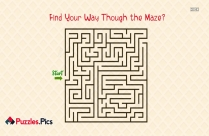 Find Your Way Though The Maze?