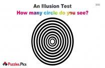 How Many Circle Do You See?