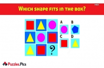 Which Shape Fits